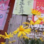 すき焼き丼とお花