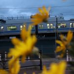 お花と一緒に電車に向かってお疲れ様